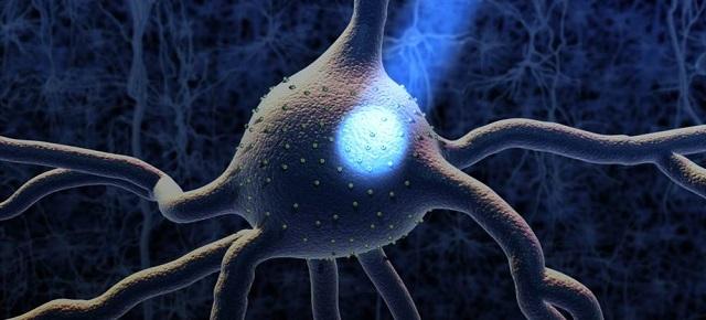 optogenetics